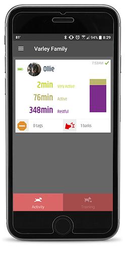 Garmin Delta Inbounds Dog Device