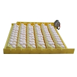 Automatic Egg Turner, Quail Eggs