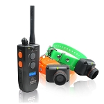 Dogtra 2502T&B Training and Beeper (2-dog)