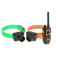 Dogtra 2702T&B Training and Beeper (2-dog)
