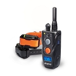 Dogtra 282C Training System (2-dog)