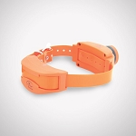 SportDOG Add-A-Dog Collar for SD-1875 UplandHunter