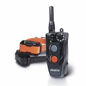 Dogtra 202C Training System (2-dog)